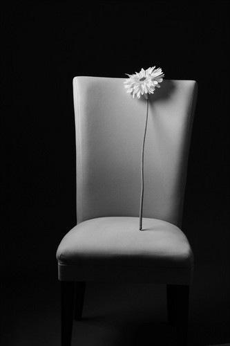 fine,art,flower-c2670ccfe8b8a94bf55da33b8ea0904b_h